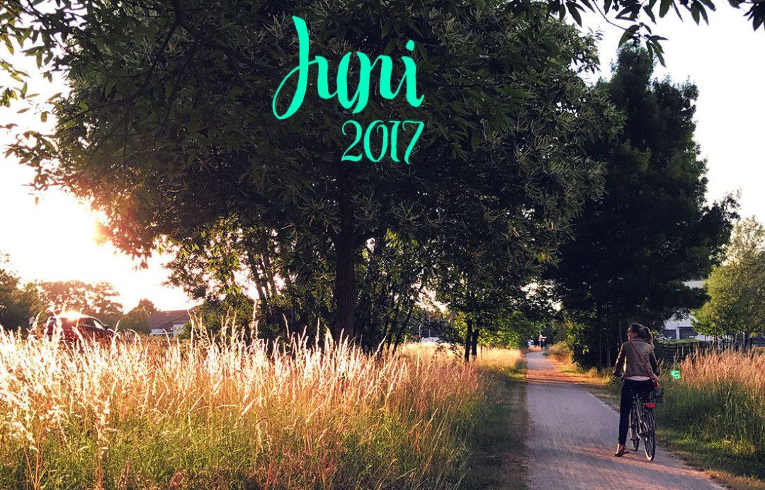 schonhalbelf-monatsrueckblick-juni-2017-buchblog-sommer-sonne-radtour