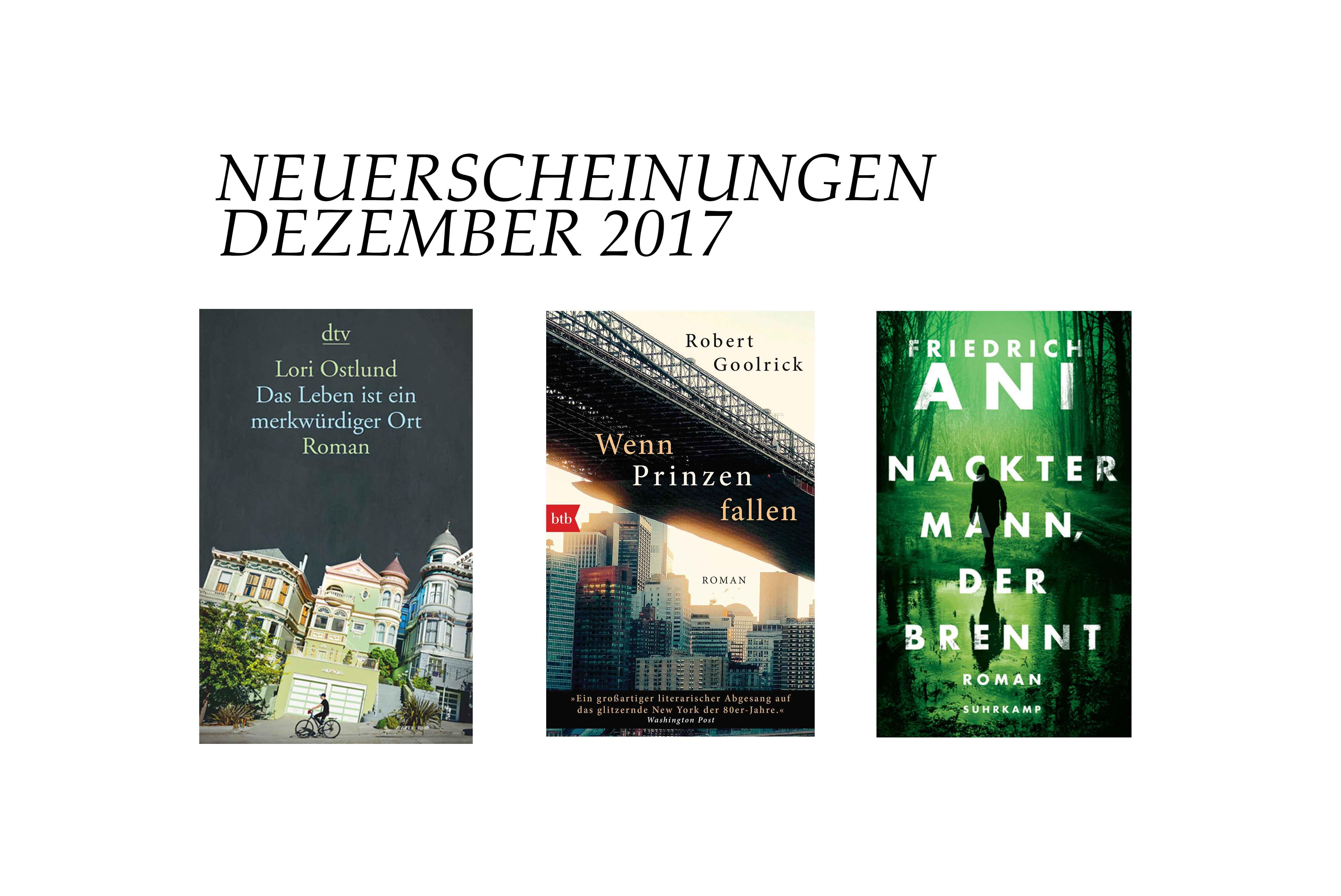 neuerscheinungen-dezember-2017-buch-schonhalbelf-buchblog-friedrich-ani-lori-ostlund-robert-goolrick