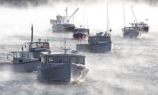 Winter Harbor Town Pier
