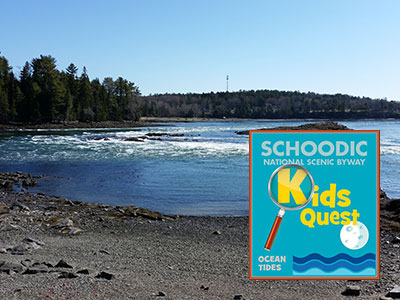 Kid's Quest: Ocean Tides