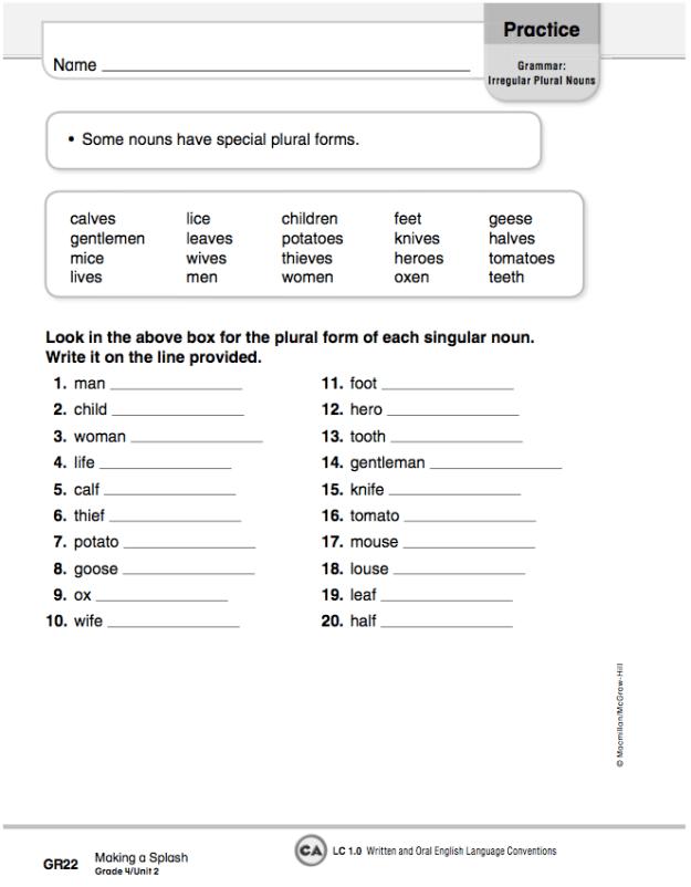Plural Irregular Nouns Worksheets #2