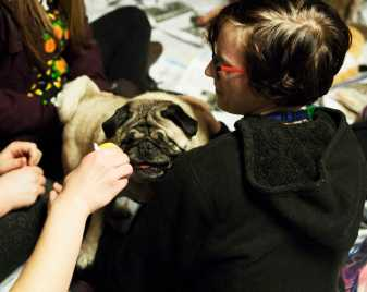 Many of the pugs had disabilities. Some were blind and others were missing legs.