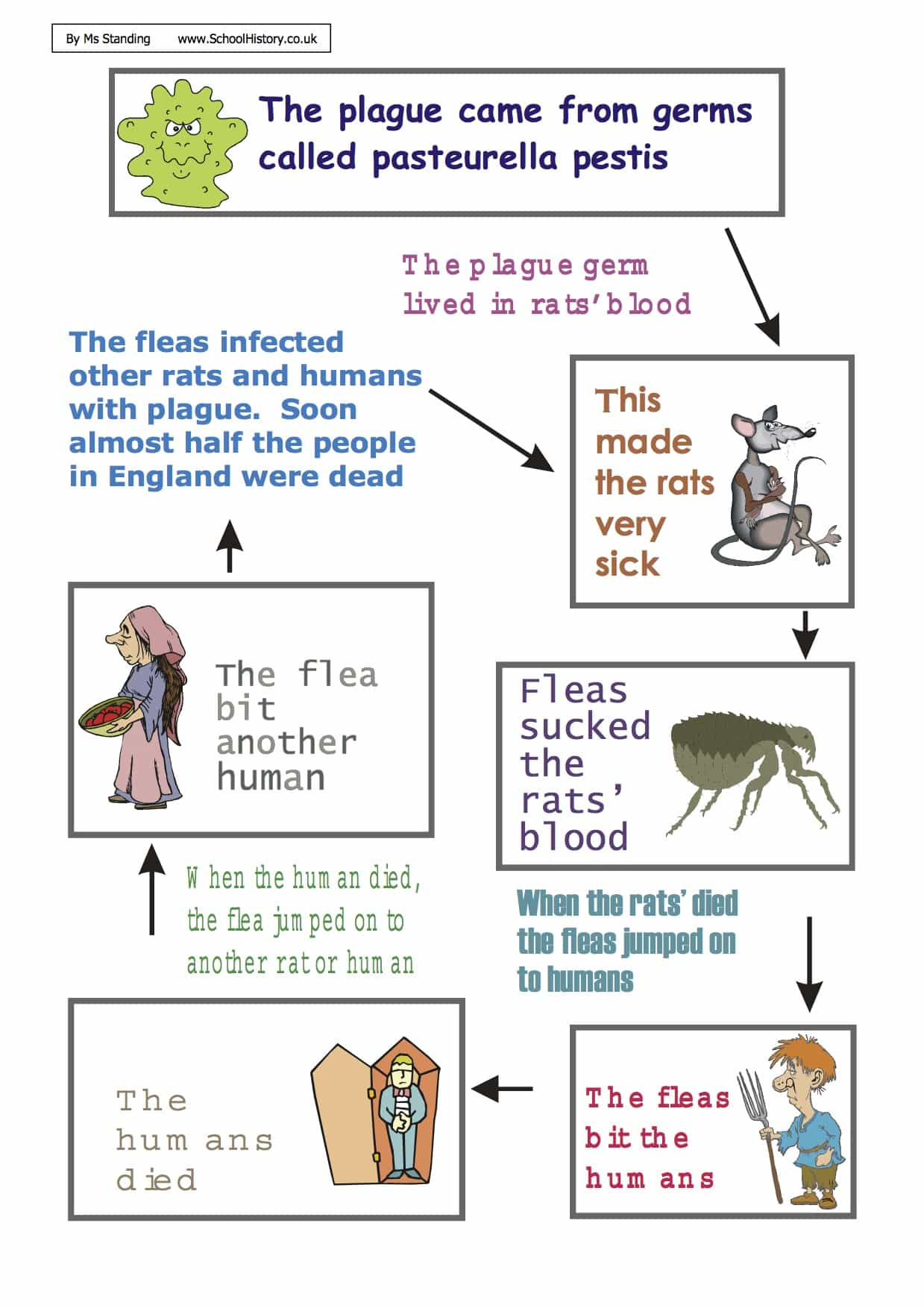Diagram Of The Great Plague Worksheet