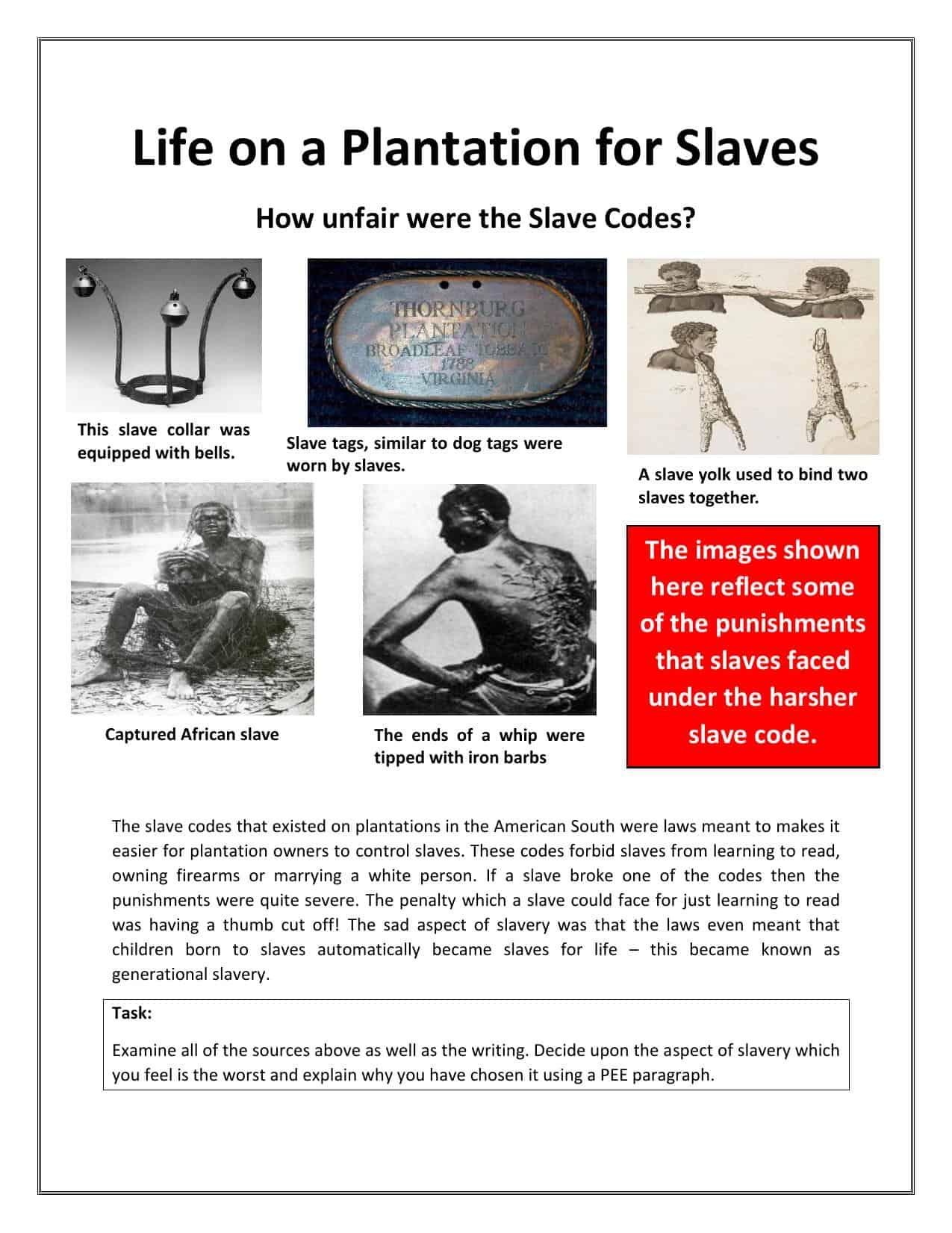 Life On A Plantation Activity Worksheet