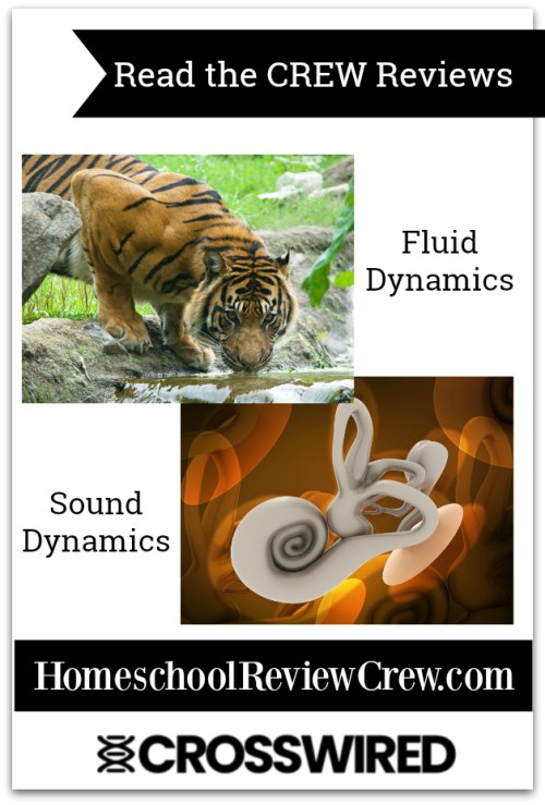 Sound, and Fluid Dynamics {CrossWired Science Reviews}