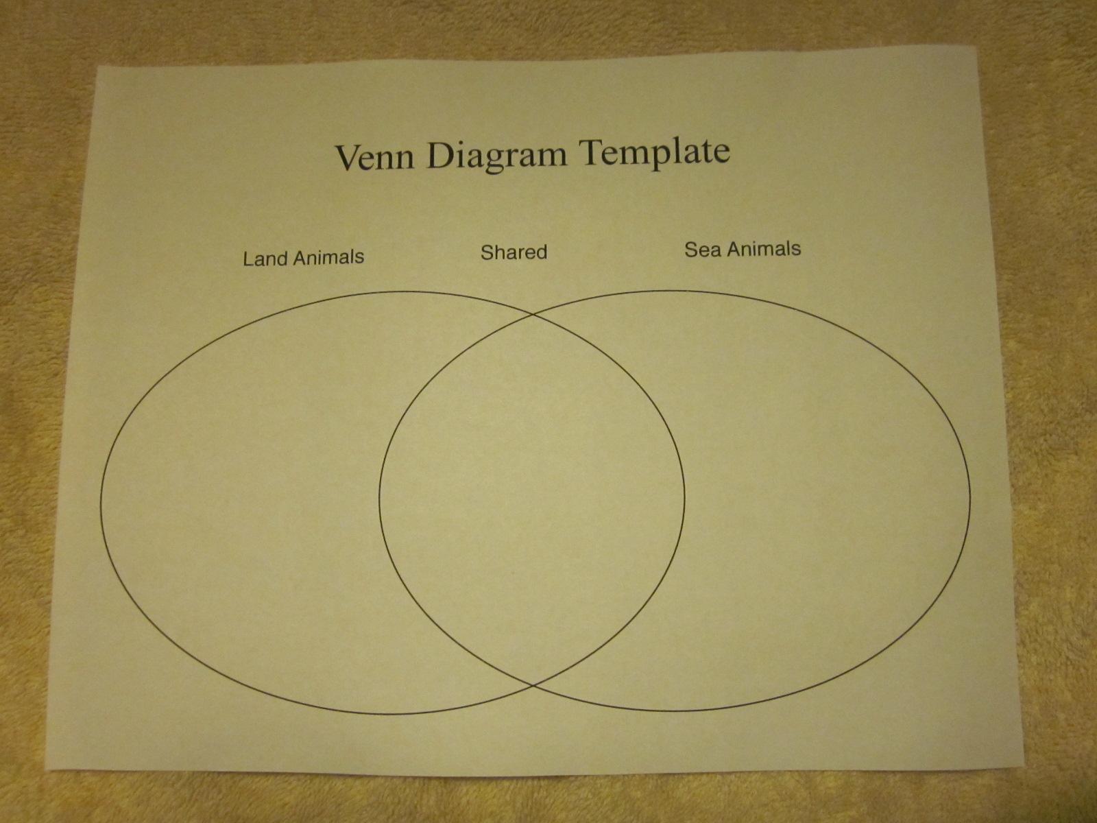 Comparison Contrast Paper