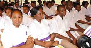 School of Health/ Nursing News