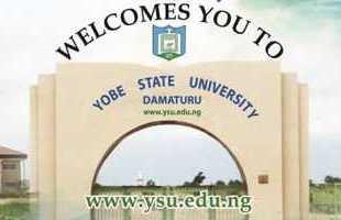 Yobe State University
