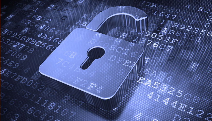 E-Learning <br> Master Privacy e Sicurezza Informatica