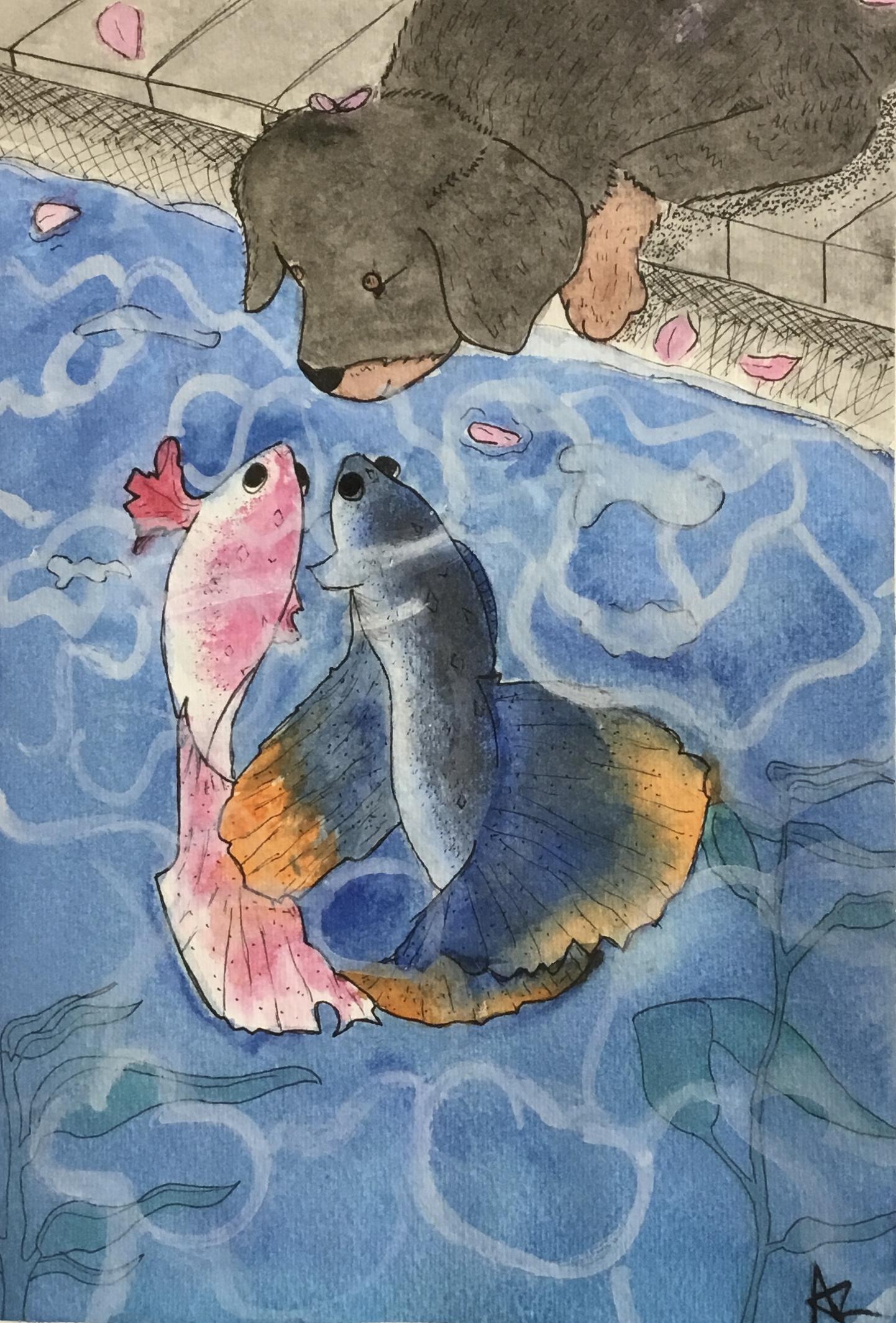dog and fish watercolor