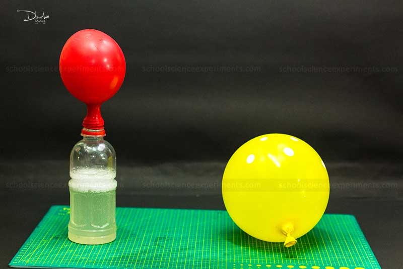Water Science Project