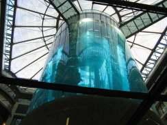 Germany Aquarium Berlin Aquarium Suspended Tourism