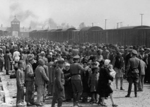 Selection process at Birkenau. The Holocaust.