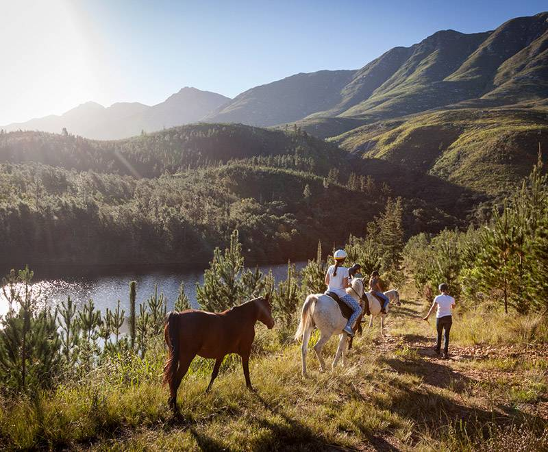 Appelsbosch Equine Encounters in Swellendam
