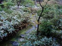 Zen temple 015