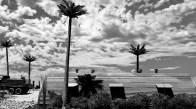 Tropical Airfield_American_013