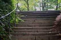 213 steps in Stamford Park web