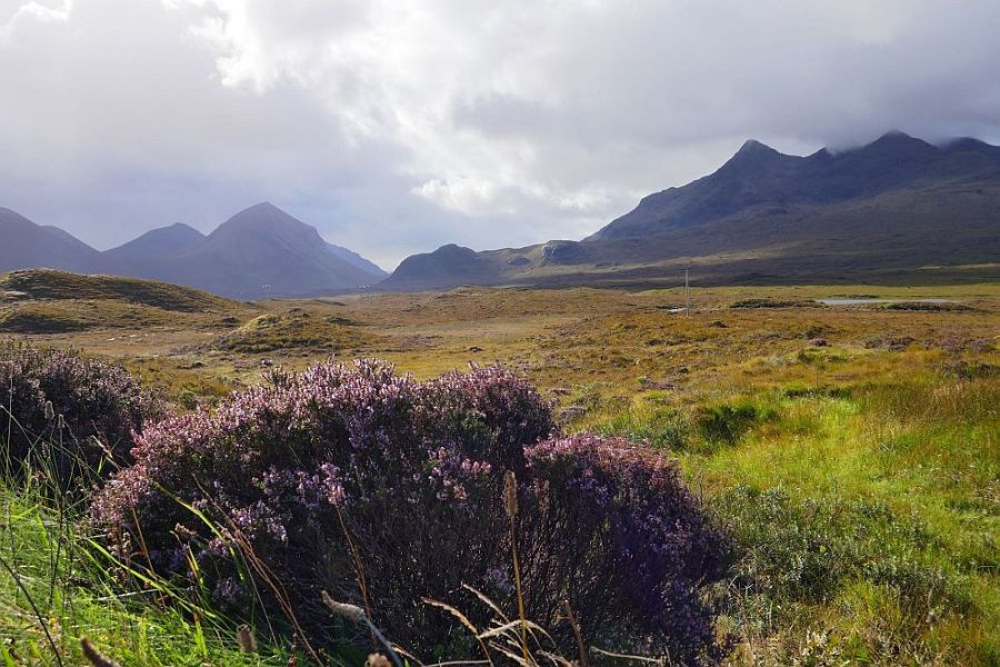 Auch in Sachen Whisky ist die schottische Insel Skye unserer Whiskyreise zu empfehlen.