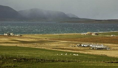 Die Orkney Inseln sind eine faszinierende Inselgruppe im Norden Schottland und Ziel der Individualreise.