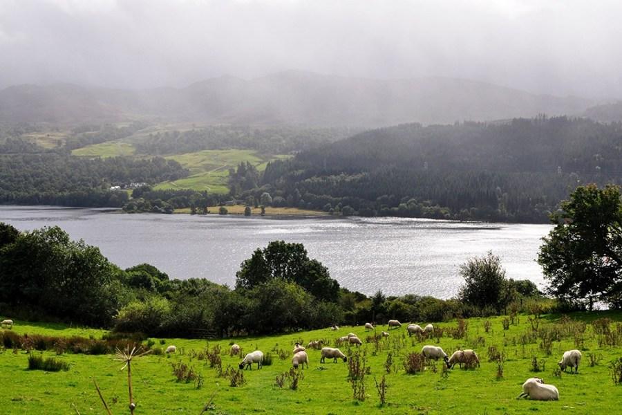 Auf unserer individuellen Reise entdecken Sie die Hoehepunkte Schottlands von einem Standort aus.