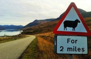 Eine Schottlandreise im Herbst ist ein einmaliger Urlaub.