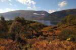 Das Trekking auf dem West Highland Way in Schottland dauert zwischen 7-10 Tagen.