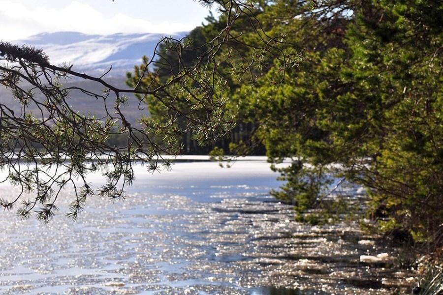 Die Central Highlands stehen im Fokus der ersten Tage dieser Wander-Bahnreise durch Schottland.