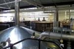 Die Orkneys sind der Hoehepunkt unserer Whiskyreise, wo wir der Highland Park Distillery einen Besuch abstatten.