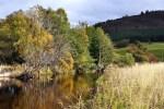 Die Schottlandreise konzentriert sich auf Naturbeobachtung.