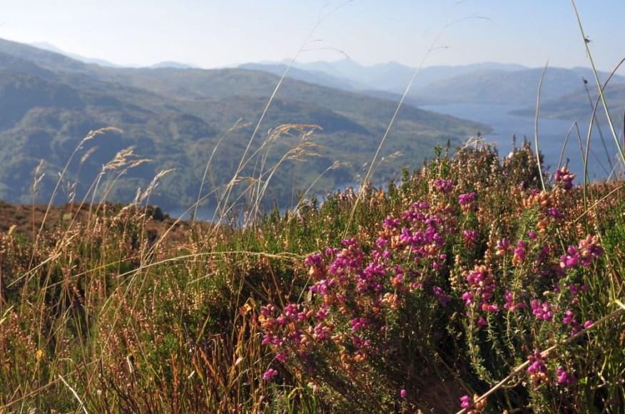 Der Herbst ist eine lohnenswerte Reisezeit fuer eine Reise nach Schottland.