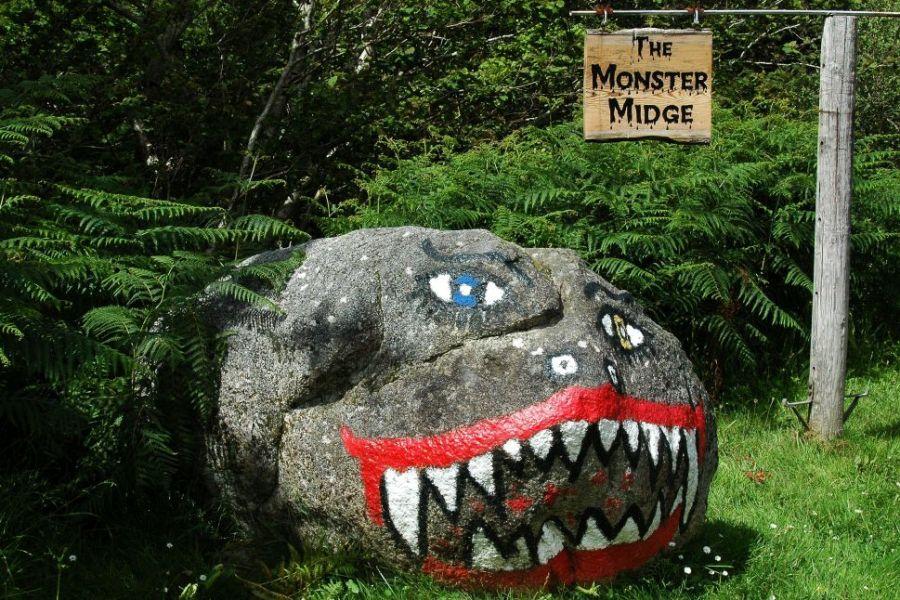 Midges, die schottischen Muecken sind in Schottland vor allem im Sommer aktiv.