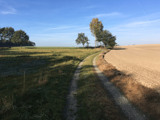 Weg an der Finkenmühle