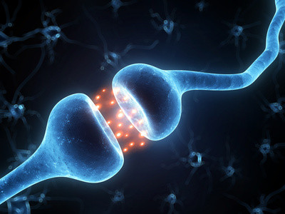 Schnappschuss aus dem Gehirn: Serotonin im synaptischen Spalt zwischen zwei Nervenzellen