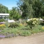 Potsdam-Garten