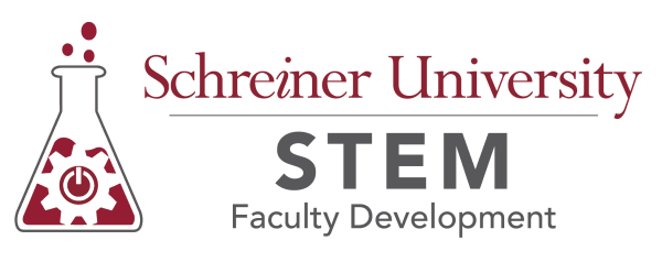 STEM Faculty Development