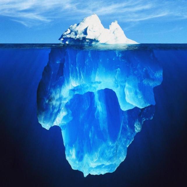 Fiscal Sponsor Deep Dive