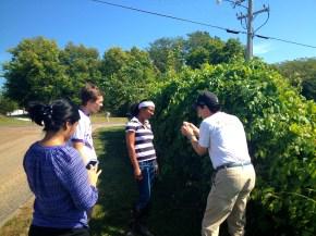 Reshma, Jacob, Trudi and Dean in the field (Rocheport MO)