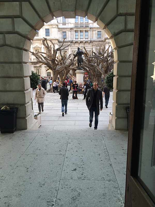Ai Weiwei trees , Courtyard of Royal Academy of Arts, London 2015