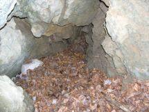 Zasypaná Jaskyňa V-1