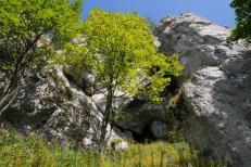 Vchod Polhôrnej jaskyne 1.9.2008