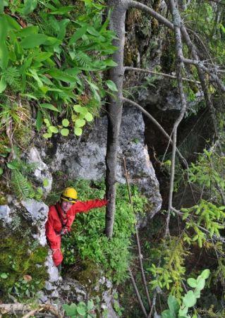 Po stromčeku sa tiež dá dostať do jaskyne