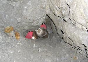 Od 14.7.2007 je jaskyňa V-1 znovu otvorená