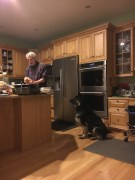 Sadie waiting patiently for David to cut the Turkey