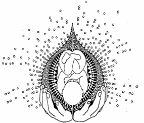 Logo Schwangerenyoga