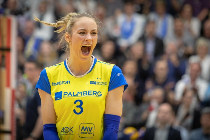 Schwerin: Volleyball-Team mit Top-Verpflichtung