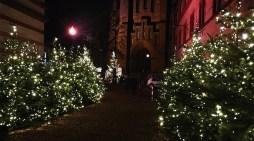 Schwerin: Gute und schlechte Veranstaltungsnews
