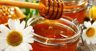 Honey in Imam Ali's Medicine