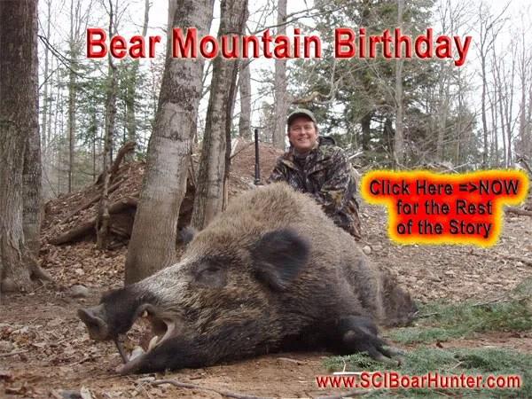 Russian Boar Hunting i