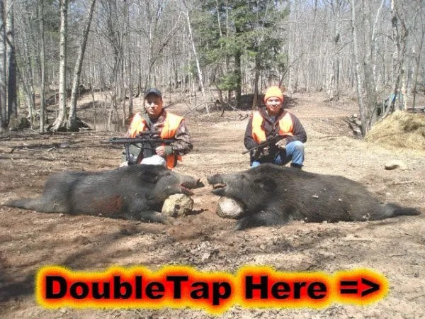 Spring Boar Hunt – Double Tap AR 10 and AR 15
