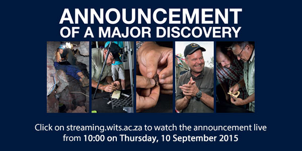 [LIVE STREAM] Follow major fossil announcement by Prof Lee ...